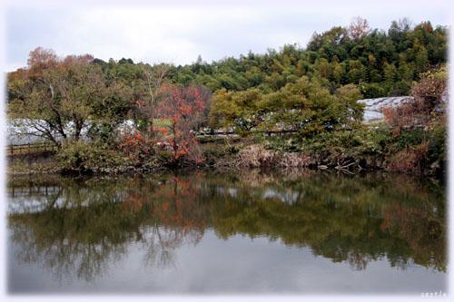 静かな池@飛鳥