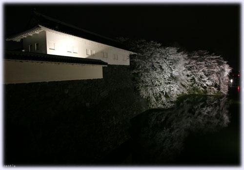夜の霞城公園@山形