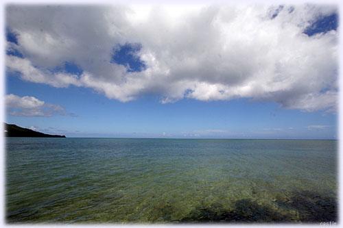 眼前に広がる石垣の海