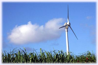波照間島の風車