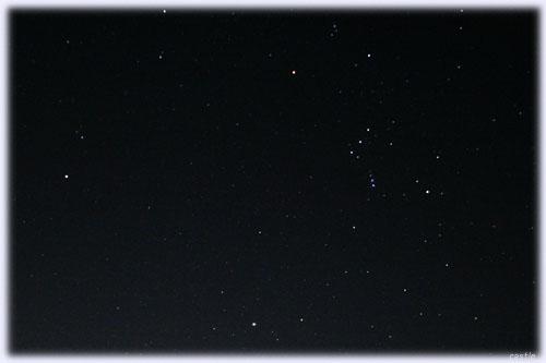 しし座流星群、見つからず