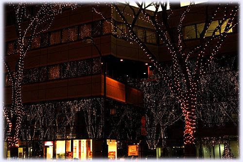 ビルの窓に映る光のページェント