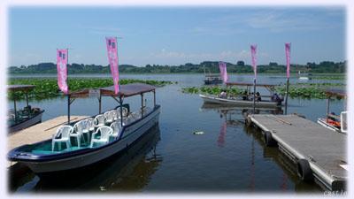 長沼の遊覧船
